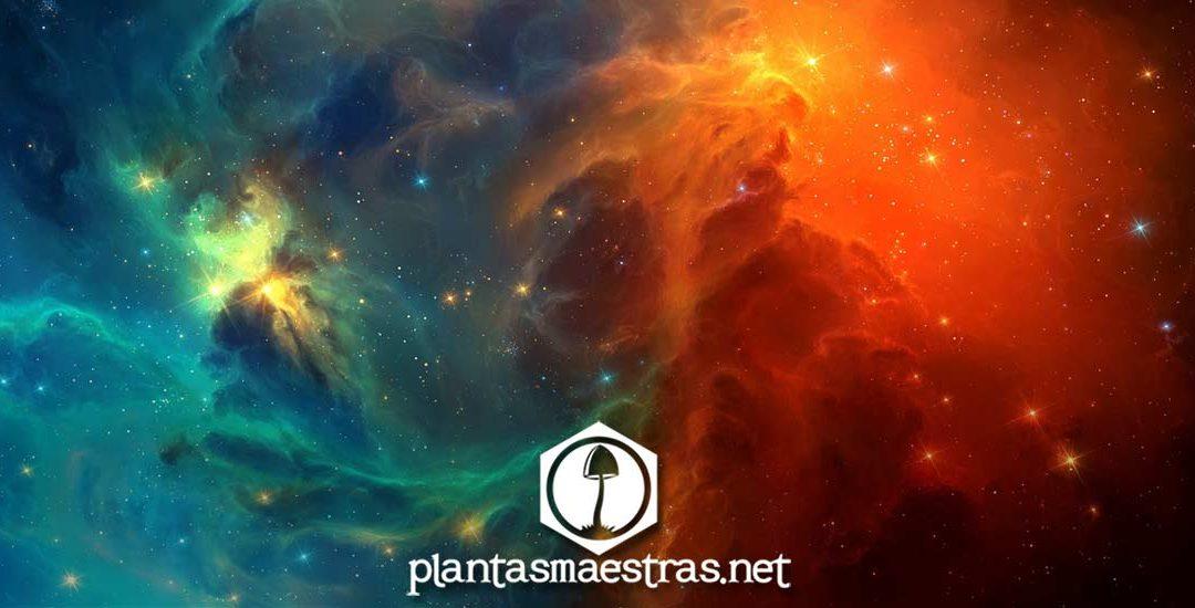 Tiempo, espacio y conciencia