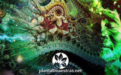 Chamanes: Los mantenedores de los mitos