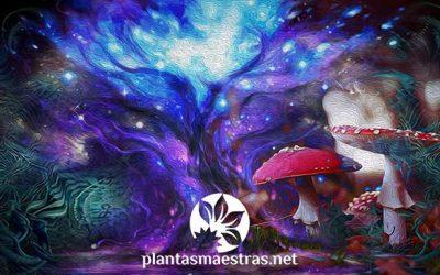 Cosmogonías divinas, cosmogonías vegetales. El Árbol Cósmico