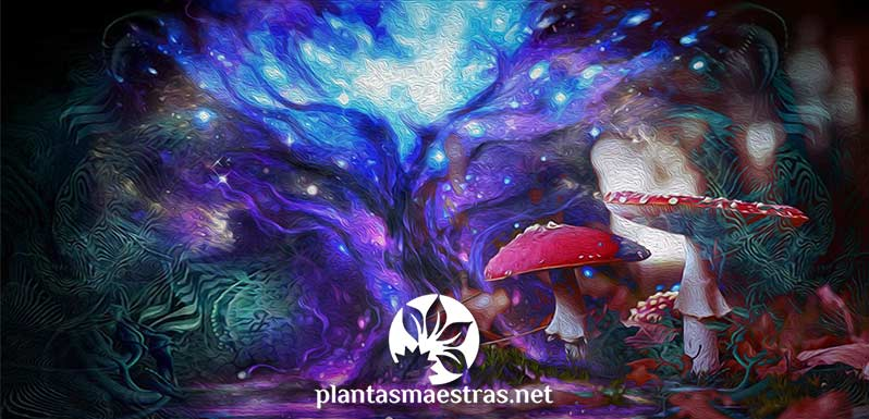 Cosmogonías divinas, cosmogonías vegetales
