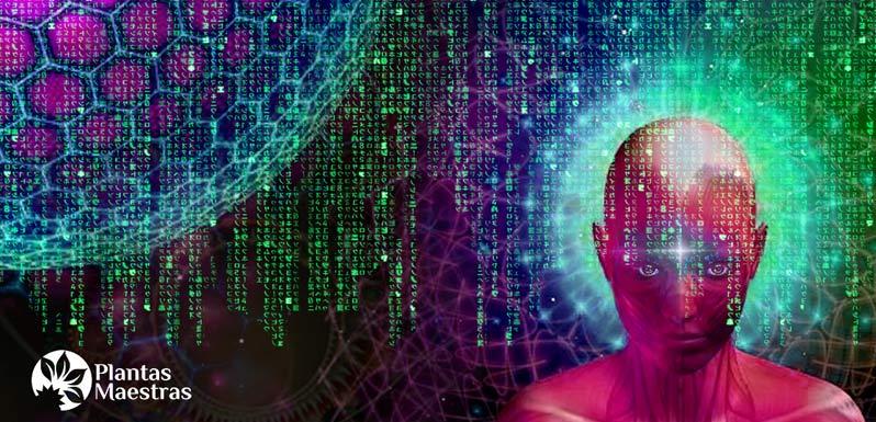 De vuelta a Matrix