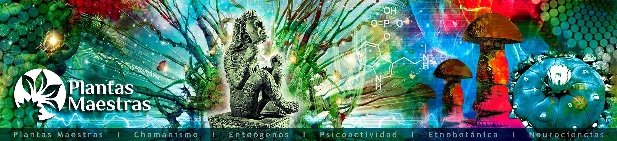 plantas sagradas, plantas maestras y chamanismo