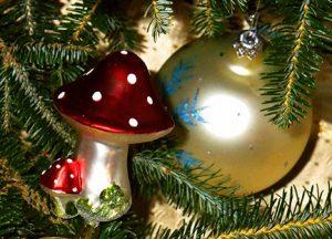 amanita Navidad