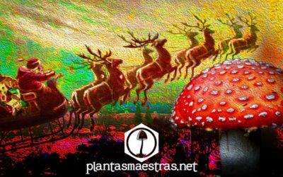 La amanita muscaria y el origen de la navidad