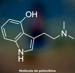 estructura de la molécula de psilocibina