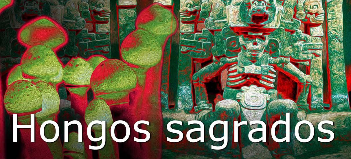 el inframundo azteca y los hongos